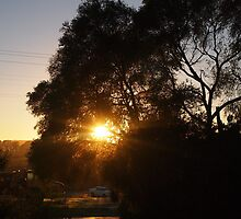 The sun rises on ANZAC Day Kilmore East VIC Australia by Margaret Morgan (Watkins)