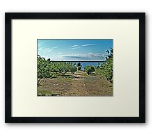 The Path From the Woods to The Castle Hill Light Framed Print