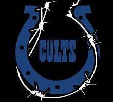 indianapolis colts by datunkeren69