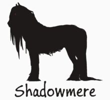 Shadowmere by AngusDrake