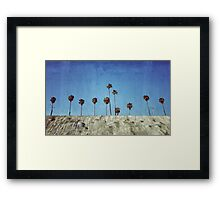 Bluff Palms Framed Print