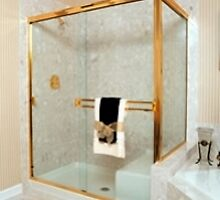 Best Quality for Your Enclosures and Architectural Glass by cardinalshower