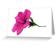 DARK PINK FLOWER Greeting Card