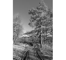 The road Photographic Print