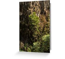 Growing Up At Trentham Falls Greeting Card