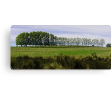 One Treeline Two Cows Canvas Print