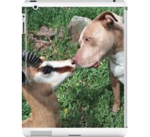Nose to Nose iPad Case/Skin