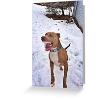 Murphy the Snow Eater Greeting Card
