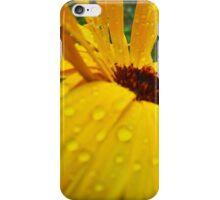 December Bloom iPhone Case/Skin