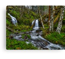 The Many Colors of Green Canvas Print