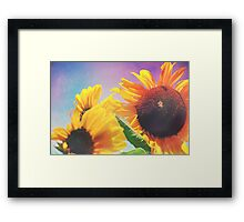 Summer Sunshine Day Framed Print