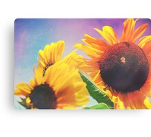 Summer Sunshine Day Canvas Print