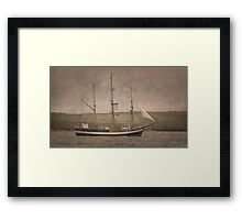 The Pelican of London Framed Print