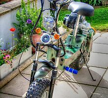 Bike on the patio by missmoneypenny