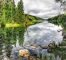 Lake reflections by Erika Price