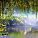 Spring Waters by Igor Zenin