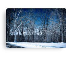 Winter Wisp Canvas Print