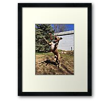 No Gravity! Framed Print