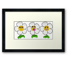 Smiling Daisies Framed Print
