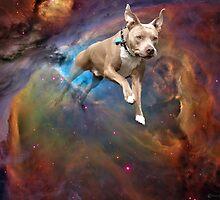 Space Murphy by flapsofdestiny