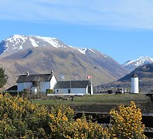 Ben Nevis from Corpach by Pat Millar