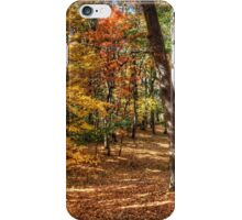 Path of Solace iPhone Case/Skin