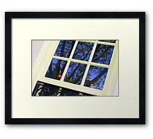 Indigo Tree at Dawn  Framed Print