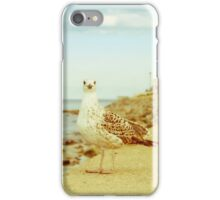 Coastal Living iPhone Case/Skin