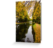 Salmon ponds tasmania , Yellow trees  Greeting Card