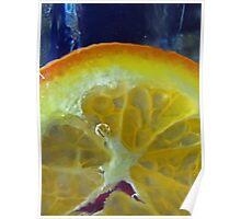 Citrus Floating Poster