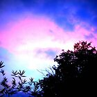 Blue and Purple Sunset by totoislostinoz