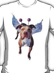Beware the Gaze of the Murphyfly T-Shirt