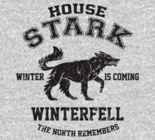 Team Stark (Black) by Digital Phoenix Design