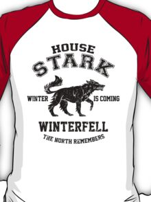 Team Stark (Black) T-Shirt