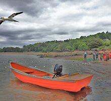 Rosemarkie Salmon Fishing  by Sandy Sutherland