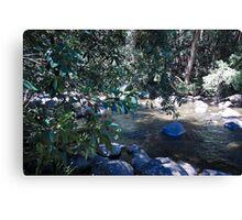 Gloucester river gloucester tops Canvas Print