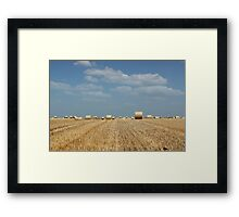 agriculture field with straw bale Framed Print