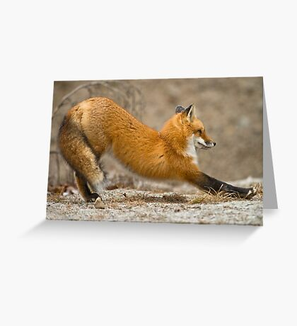 Stretching Greeting Card