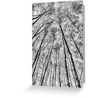 The Forest Greeting Card