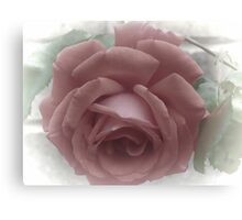 Faded Red Rose Canvas Print