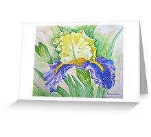 Dew drops upon iris Greeting Card