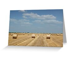 straw bale field Greeting Card
