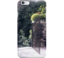Iron and Stone iPhone Case/Skin