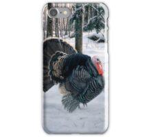 Getting The Run Around - Wild Turkey iPhone Case/Skin