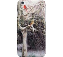 Winter Veil - Cardinal Pair iPhone Case/Skin