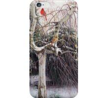 Winter Veil - Cardinal Pair iPhone Case/Skin