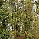 Colzium Estate,Kilsyth,Scotland by Jim Wilson