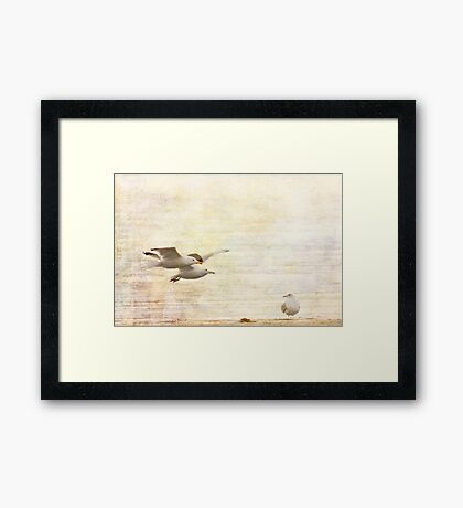 fly-by Framed Print