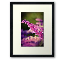 Bestbrook Garden Framed Print