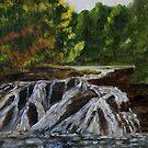 Adirondack Falls by Gary Adams